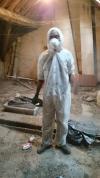 maladies du pigeons transmissibles à l'homme